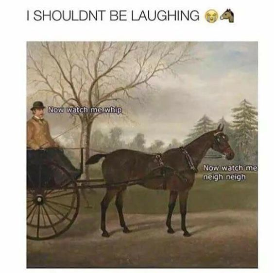 19 Memes Hilarious Cant Stop Laughing Videos 3