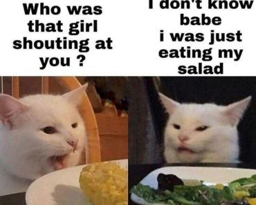 20 Memes Hilarious Cant Stop Laughing Lol 15